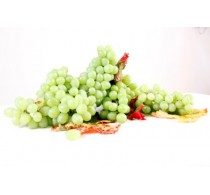 Thompson Seedless 2 KG